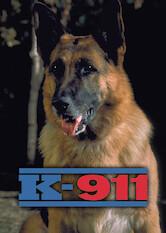Search netflix K-911